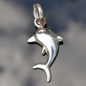Zilveren hanger Dolfijn