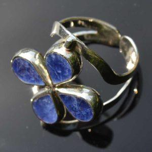 Zilveren ring Dubbel Steen Bloem