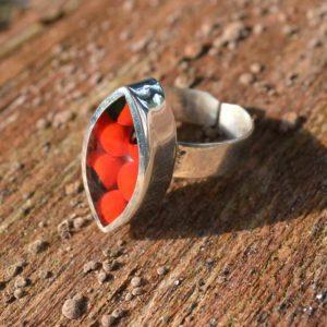 Zilveren ring Huayruro